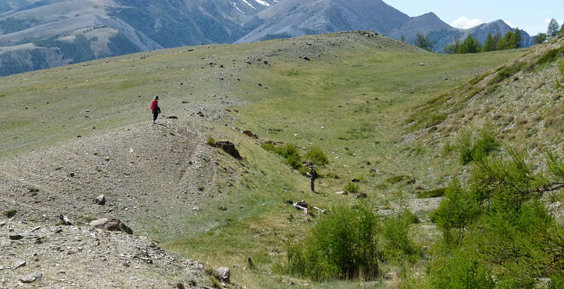 Traces of three strong ancient earthquakes are found in the Altai