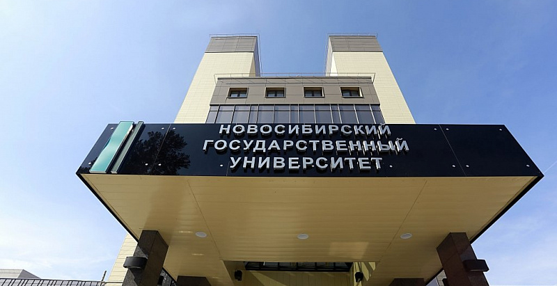 NSU is recognized as one of the best in the subject ratings for scientific productivity at Russian universities